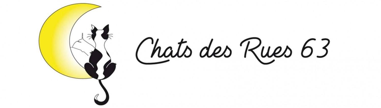 chats des rues 63 l 39 association des chats de clermont ferrand. Black Bedroom Furniture Sets. Home Design Ideas